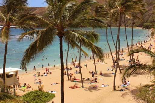 Honolulu Amerika Yaz Okulu Atlantik Danismanlik